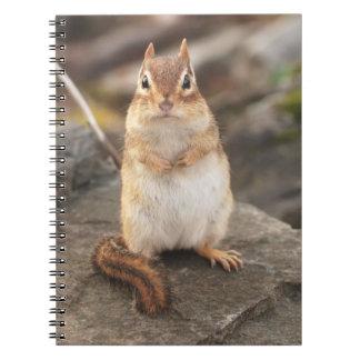 Chipmunk adorablemente mullido libro de apuntes