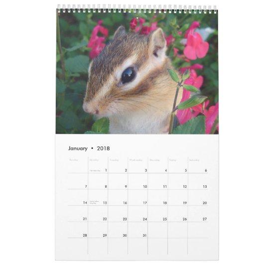 chipmunk (All countries) Calendar