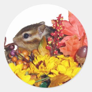 Chipmunk and Autumn (4) photo Classic Round Sticker