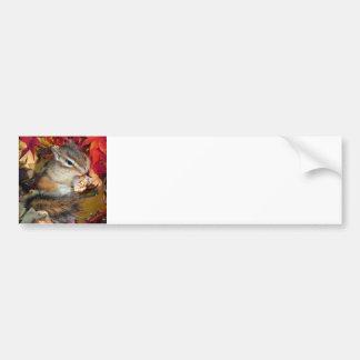 Chipmunk and Autumn (8) photo Bumper Sticker