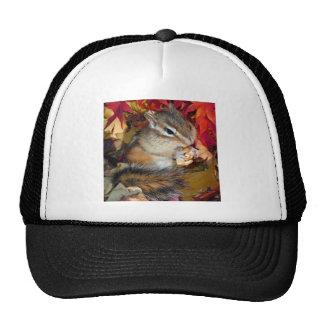 Chipmunk and Autumn (8) photo Trucker Hat