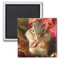 Chipmunk and Autumn (9) photo Magnet