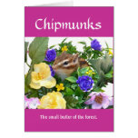 Chipmunk and flower (pohto) type-1 card