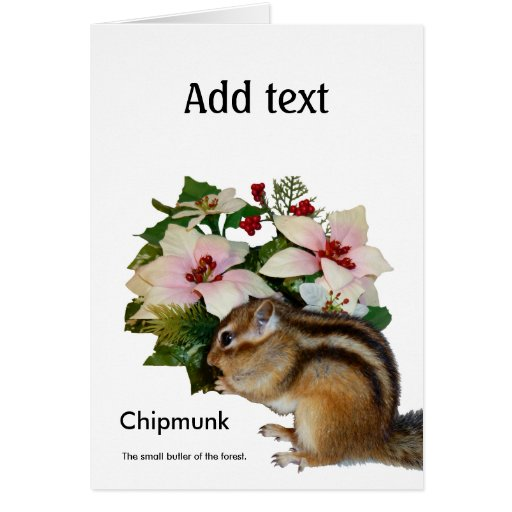 Chipmunk and flower (pohto) type-4 card