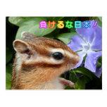 Chipmunk and Support JAPAN Postcard