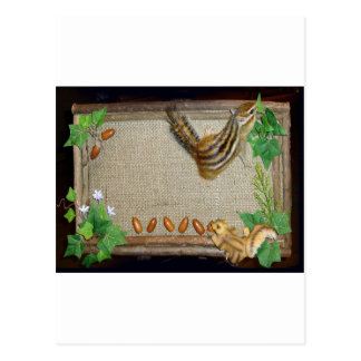 chipmunk and welcome board postcard