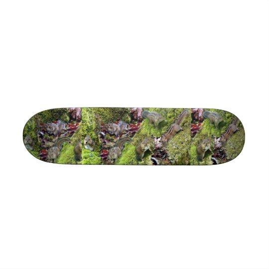 Chipmunk Animals Wildlife Photography Skateboard Deck
