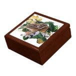 chipmunk, ardilla, caja de regalo