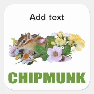 chipmunk, ardilla, foto pegatinas cuadradases personalizadas