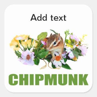 chipmunk, ardilla, foto calcomanías cuadradass personalizadas