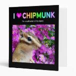 Chipmunk, ardilla. (llustration, foto)