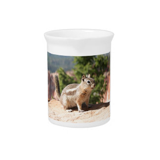 Chipmunk at Bryce Canyon Drink Pitchers