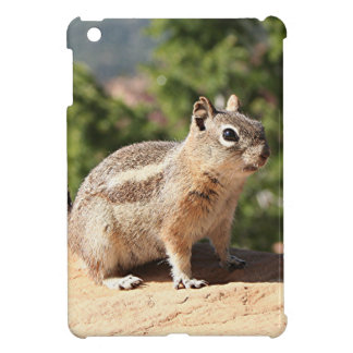 Chipmunk at Bryce Canyon iPad Mini Cases