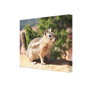 franwestphotography Chipmunk at Bryce Canyon, Utah Canvas Print