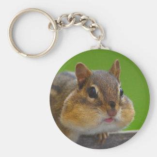 chipmunk basic round button keychain