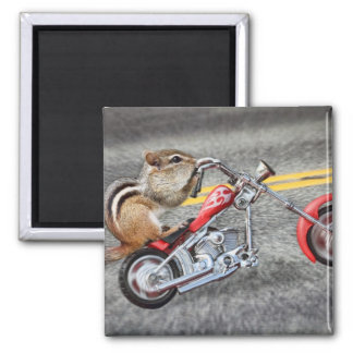 Chipmunk Biker Riding a Motorcycle 2 Inch Square Magnet