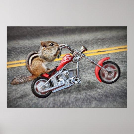 Chipmunk Biker Riding a Motorcycle Poster