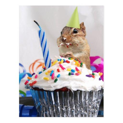 chipmunk birthday celebration postcard