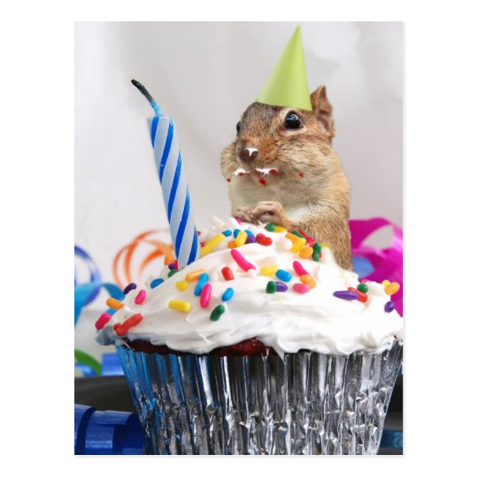 chipmunk birthday celebration postcard