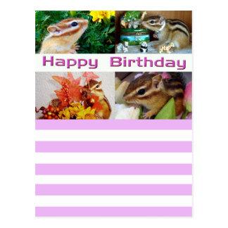 Chipmunk, Birthday, Holiday and Cristmas (photo) Postcard