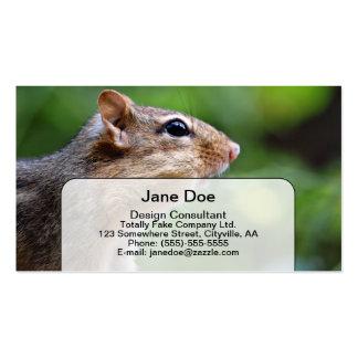 Chipmunk Business Card Template