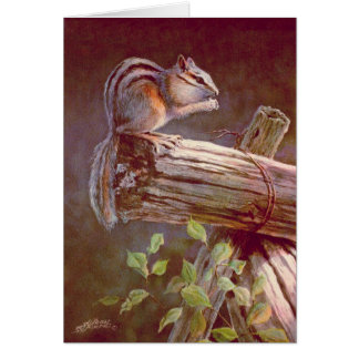 CHIPMUNK by SHARON SHARPE Card
