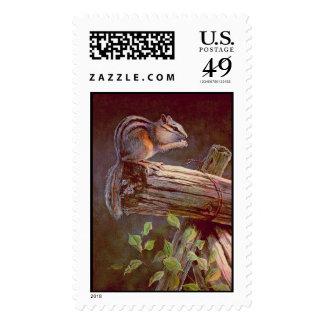 CHIPMUNK by SHARON SHARPE Stamp