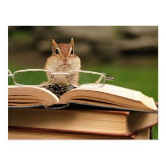 Chipmunk cariñoso del libro postal