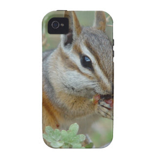 Chipmunk Case For The iPhone 4