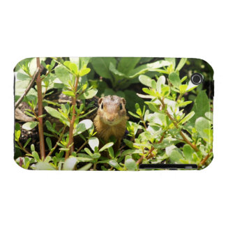 Chipmunk Case for iPhone 3G/3Gs.