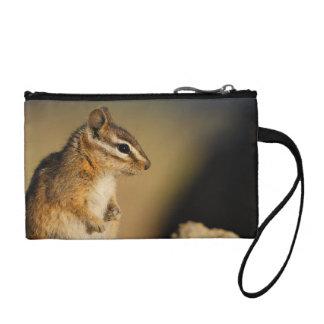 chipmunk change purse