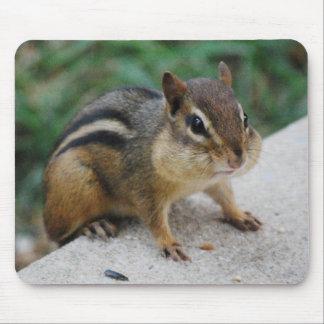 Chipmunk Cheeks Mousepads