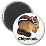 Chipmunk. Chipmunk Imanes Para Frigoríficos