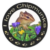 Chipmunk_ Circle_20 Classic Round Sticker