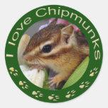 Chipmunk_ Circle_3