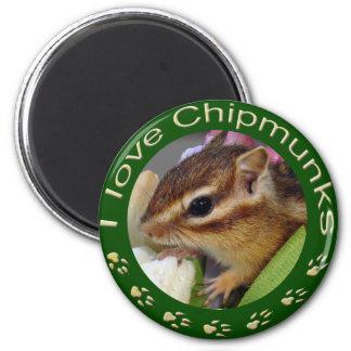 Chipmunk_ Circle_3 Magnet
