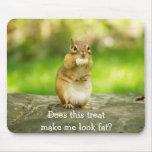 Chipmunk con la invitación tapete de ratón