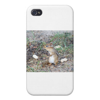 Chipmunk Cover For iPhone 4