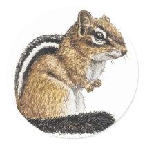 Chipmunk Cutie Classic Round Sticker