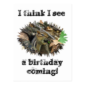 Chipmunk del este de la tarjeta de cumpleaños postales