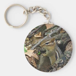 Chipmunk del este - striatus del Tamias Llavero Redondo Tipo Pin