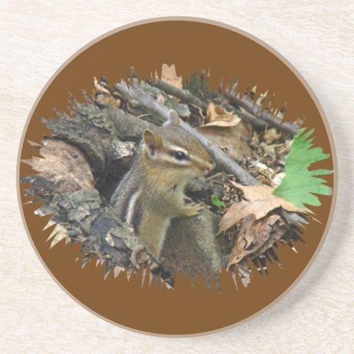 Chipmunk del este - striatus del Tamias Posavasos Personalizados