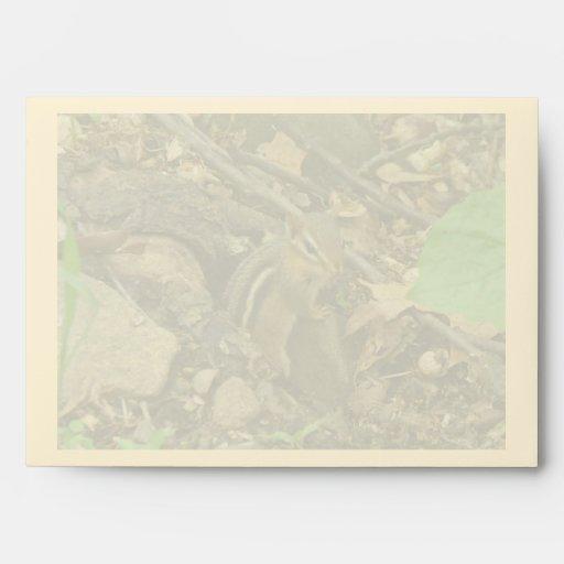 Chipmunk del este - striatus del Tamias
