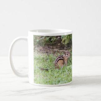 Chipmunk del este taza de café