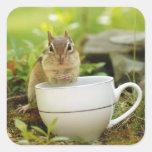 Chipmunk del tiempo del té pegatina cuadrada