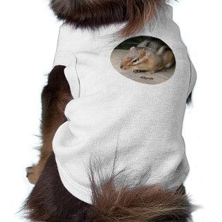 Chipmunk Dog Clothes