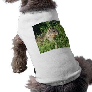 Chipmunk dog shirt