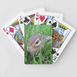 Chipmunk en la hierba baraja cartas de poker