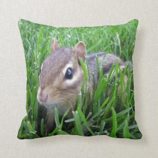 Chipmunk en la hierba cojin