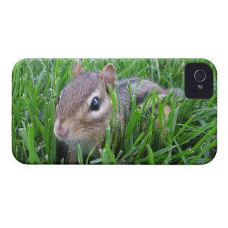 Chipmunk en la hierba Case-Mate iPhone 4 protector